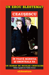 Un erou blestemat: Ceausescu..., un roman de Nicolae Cristache